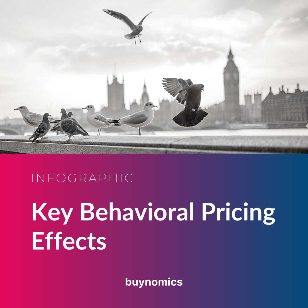 Infographic Banner Key Behavioral Pricing Effects