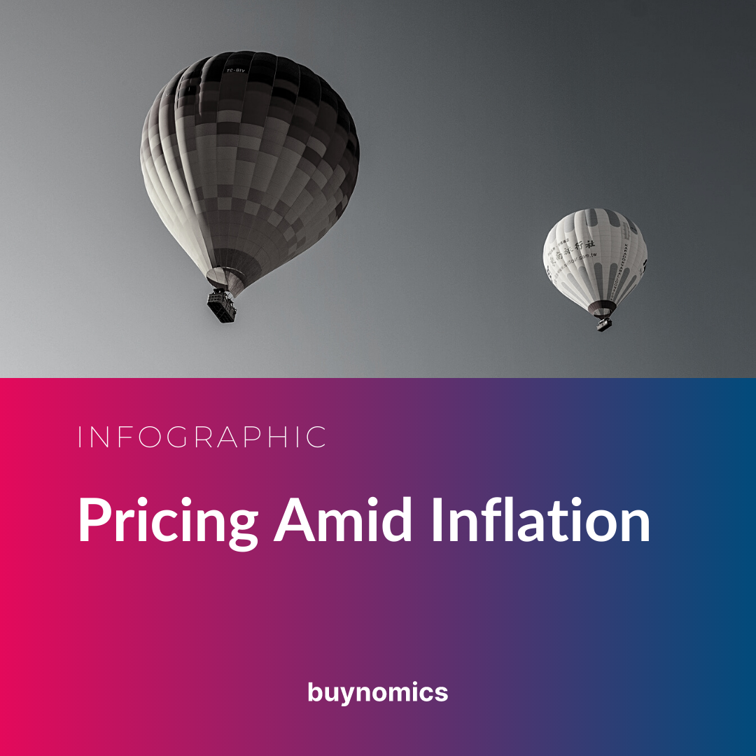 Infographic Banner Pricing Amid Inflation