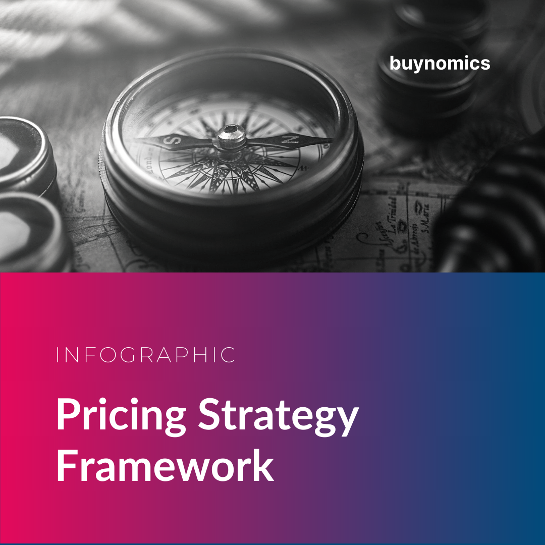 Infographic Pricing Strategy Framework